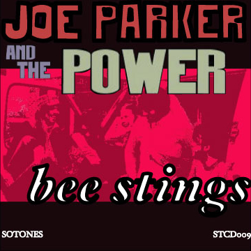 Lonely Joe Parker – Bee Stings Artwork