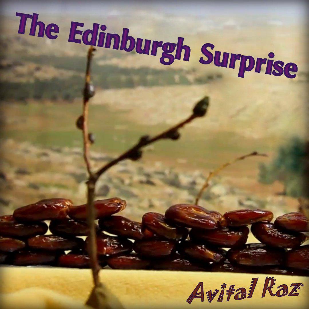 Avital Raz – The Edinburgh Surprise Artwork